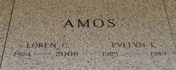 Evelyn L Amos