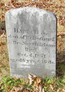 Hannah A. Adams