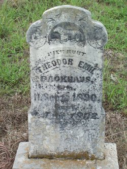 Theodor Emil Backhaus