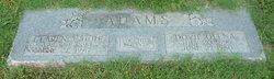 Clarence Hoit Adams