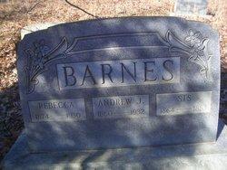 Andrew J. Barnes