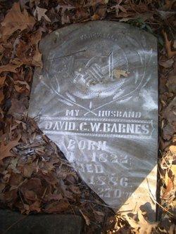 David George Washington Barnes
