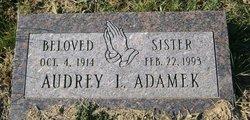 Audrey <i>Davidson</i> Adamek