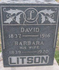 David Litson