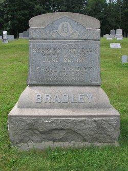 Sarah <i>Over</i> Bradley