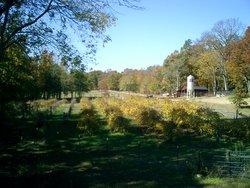 Dial Family Cemetery