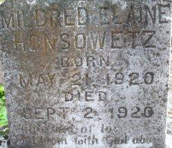Mildred Elaine Honsowetz