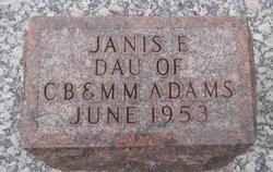 Janis Elaine Adams