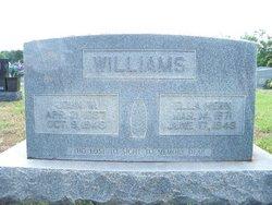 John Walstein Williams