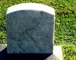 Infant Barney
