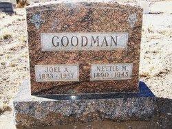 Joel Albert Goodman