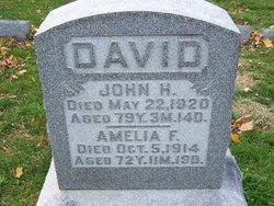 Amelia F. David