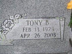 Tony B. Byrne