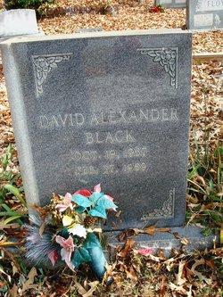 David Alexander Black