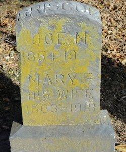Mary Elizabeth <i>Hayes</i> Briscoe
