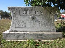 Harriet W Collins