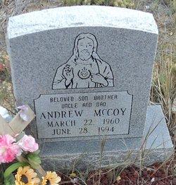 Andrew McCoy