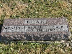 Kenneth L Bush