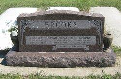 Sarah Elizabeth Brooks