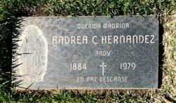 Andrea C. Andy Hernandez
