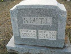 Andrew M Smith