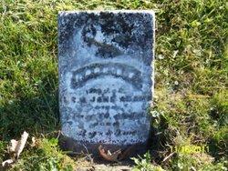 Harriet J Adams