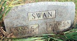 Albert Gallatin Nicholson Bert Swan