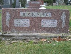 Jacob Charles Breyer
