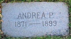 Andrea <i>Petersen</i> Wilson