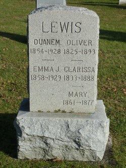 Duane M. Lewis