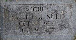 Mary Jane Mollie <i>Clark</i> Sult