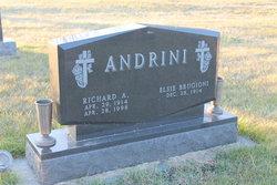 Richard A Andrini