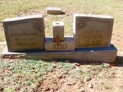 Henry Ward Reid