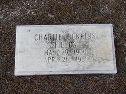 Charlie Jenkins Fields