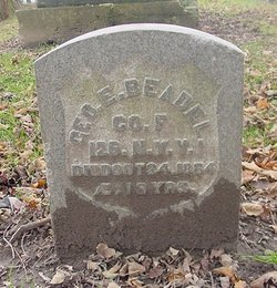George E Beadle