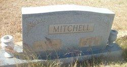 William Arthur Mitchell