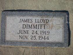 James Lloyd Lloyd Dimmitt