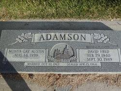 David Fred Adamson