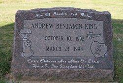 Andrew Benjamin King