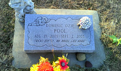 Dominic Ozie Pool