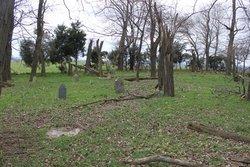 Shang Graveyard