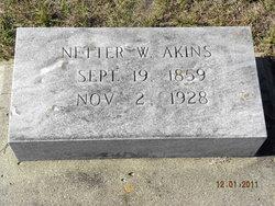 Sarah Antinetta Netter <i>Wilson</i> Akins