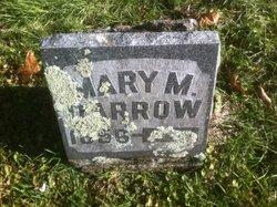 Mary <i>Ellison</i> Darrow