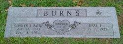 Carolyn S <i>Payne</i> Burns