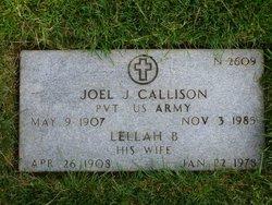 Joel J Callison