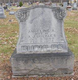 Angeline Armedia <i>Watt</i> Buckles
