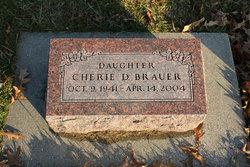 Cherie Darlene Brauer