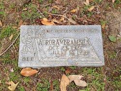 Aurora M. Brambila