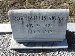 John Willis Akins