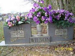 Chester A Wilson